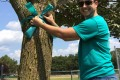 2015 Teal Ribbons of Hope Campaign